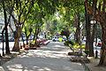 Avenida Álvaro Obregón, Colonia Roma, Ciudad de México 2..jpg