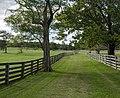 Back Lane Appomattox VA1.jpg