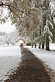 Bad Waldsee, Winter 2012-13 004.JPG
