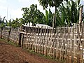 Bamboo fence surrounding a compund in zada.jpg