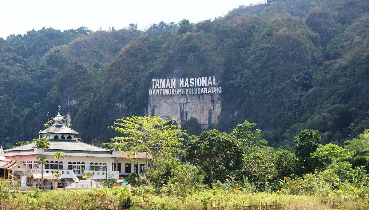 Bantimurung – Bulusaraung National Park - Wikipedia