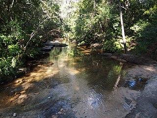 Bare Creek