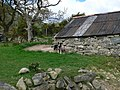 Barn and sheepdog at Lleiniau Hirion - geograph.org.uk - 1310442.jpg