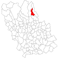 Location of Bătrâni