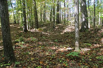 Battle of Pickett's Mill - Remains of a trench dug during the battle