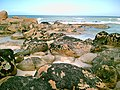 Bay of Fires Wilderness 03.jpg