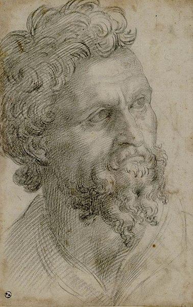File:Bearded Man. Cellini, Benvenuto. Bearded Man. Recto. 28.3 x 18.5 cm. Paper, graphite (1540-1543) Royal Library, Turin.jpg