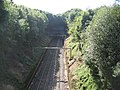 Beechwood Tunnel - geograph.org.uk - 41567.jpg