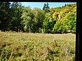 Bei Neresheim - panoramio.jpg