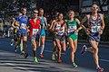 Berlin Marathon 2015 (21576643578).jpg