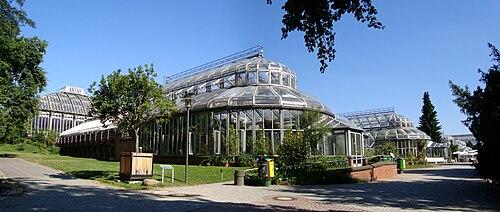 Berlin jardin botanique serres.jpg