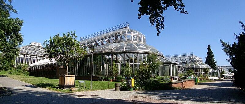 File:Berlin jardin botanique serres.jpg