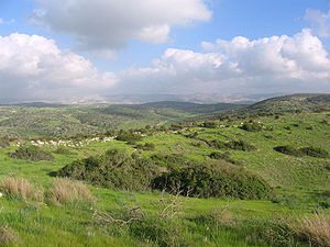 Bozkath - The Shephelah, east of Lachish.