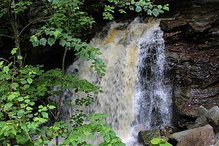 Big Run (East Branch Fishing Creek tributary) tributary of East Branch Fishing Creek in Sullivan County, Pennsylvania