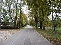 Bikūnai 28402, Lithuania - panoramio (19).jpg