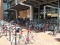 Bikes at PSU (2014).jpg