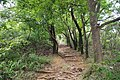 Binhu, Wuxi, Jiangsu, China - panoramio (41).jpg