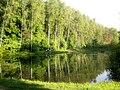 Biryulyovskiy arboretum.jpg