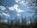 Blue sky - panoramio (1).jpg