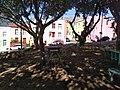 Bo-Kaap, Cape Town (3).jpg
