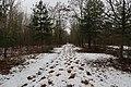 Bois de Boulogne neige 13.jpg