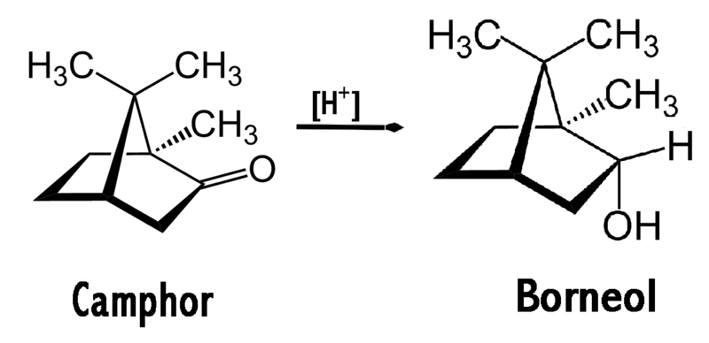 File:Borneol synthesis.png