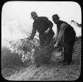 Bosbouw, bosbrand, tegenvuur, Bestanddeelnr 193-0434.jpg