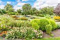 Botanic Gardens In Glasnevin (Dublin) (7951850786).jpg