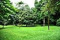 Botanic garden limbe69.jpg