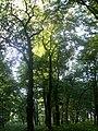 Botanical garden in Zugdidi(15).jpg