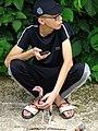 Boy with Chick - Dien Bien Phu - Vietnam (48178543227).jpg