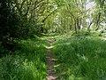 Bransgore, footpath - geograph.org.uk - 1298204.jpg