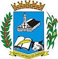 Brasão de Santo Antônio do Amparo.jpg