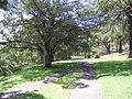 Brennan Park Wollstonecraft Sydney Australia 1.jpg
