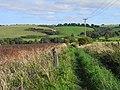 Bridleway, Letcombe Bassett - geograph.org.uk - 1571033.jpg