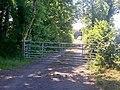 Bridleway, Ludchurch - geograph.org.uk - 1368615.jpg