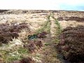 Bridleway on the Rigg - geograph.org.uk - 365501.jpg