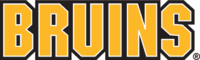 Bruins Wordmark.png