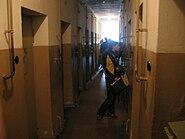 Buchenwaldcells