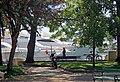 Budva, yachts. Яхты - panoramio.jpg