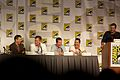 Burn Notice Panel 1 2010 CC.jpg