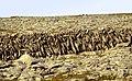 Burren-02-Mauern-1989-gje.jpg