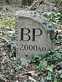 Burrington Parish Boundary Stone - geograph.org.uk - 357395.jpg