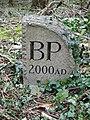 Burrington Parish Boundary Stone - geograph.org.uk - 357395.jpg