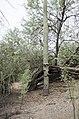 Butcher Jones Trail to Pinter's Point Loop, Tonto National Park, Saguaro Lake, Ft. McDowell, AZ - panoramio (84).jpg