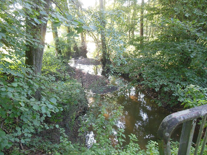 Buttenbach-Petersbach Brook in Rahling