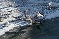Canal Saint-Martin, Paris - Frozen Canal - Seagulls.jpg