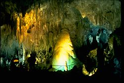 Carlsbad Caverns National Park CAVE4442.jpg