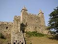 Castelo de Stanta Maria da Feira.jpg