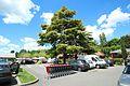 Centre Commercial Val Courcelle à Gif-sur-Yvette le 21 mai 2017 - 01.jpg